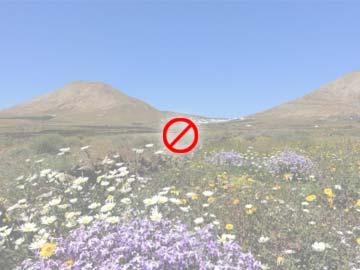 ferienwohnung bei el medano mit beheizbarem pool und balkon. Black Bedroom Furniture Sets. Home Design Ideas