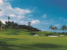 Abama Golf Grünanlage