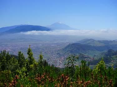 Blick vom Pico del Ingles